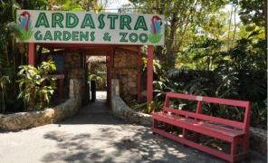 巴哈马拿骚动物园