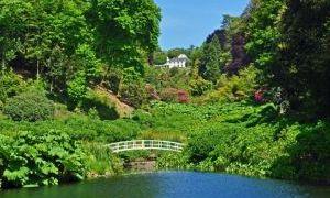 特雷巴花园