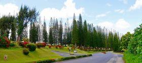 毛伊岛 神奇之岛