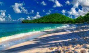 托尔托拉岛