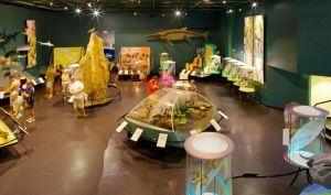 北领地博物馆和艺术馆