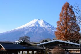 富山 药材之乡