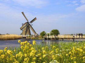 鹿特丹 乳酪王国