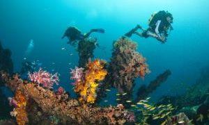 东姑·阿布杜·拉赫曼海洋公园