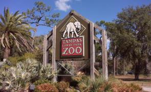坦帕罗瑞动物园